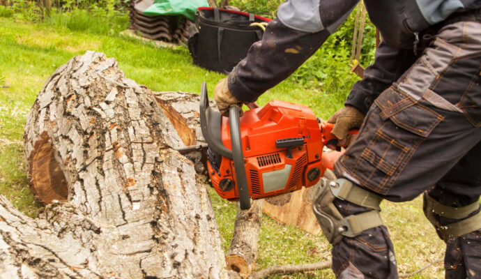 Stump Grinding & Removal-Palm Beach Island Tree Trimming and Tree Removal Services-We Offer Tree Trimming Services, Tree Removal, Tree Pruning, Tree Cutting, Residential and Commercial Tree Trimming Services, Storm Damage, Emergency Tree Removal, Land Clearing, Tree Companies, Tree Care Service, Stump Grinding, and we're the Best Tree Trimming Company Near You Guaranteed!